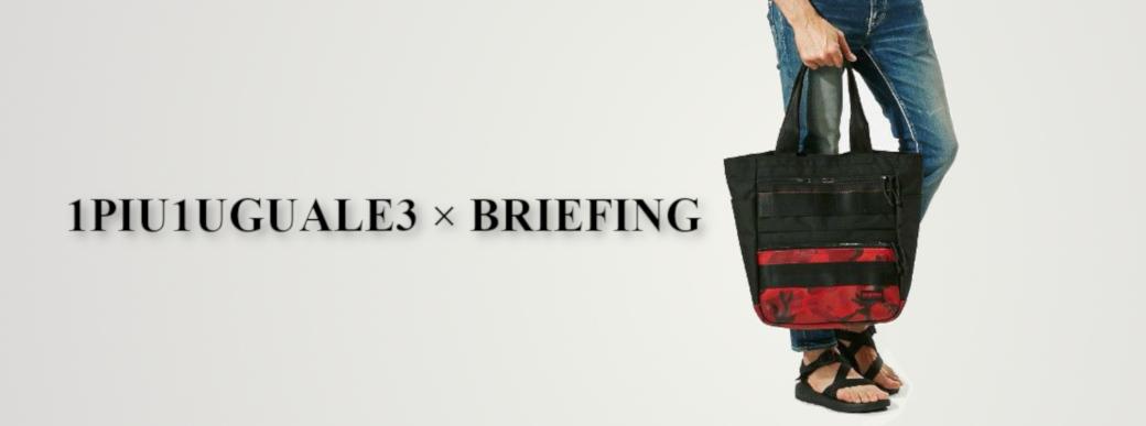 1piu1uguale3 briefing