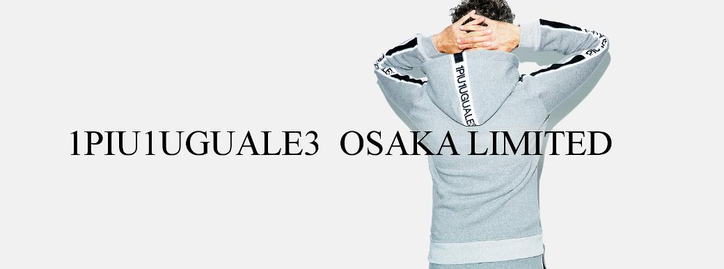 1piu1uguale3 limited